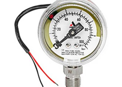 IPS 300 Ultra-High Purity Pressure Switch Gauge